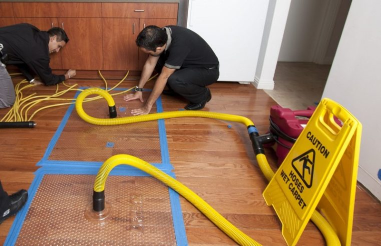 Water Damaged Hardwood Floors: How Professionals Can Help