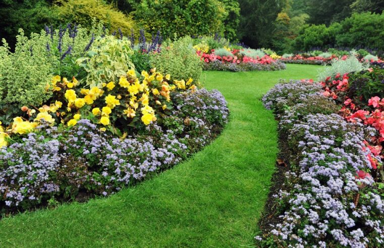 Why Hiring Professional Landscape Maintenance Services is Essential