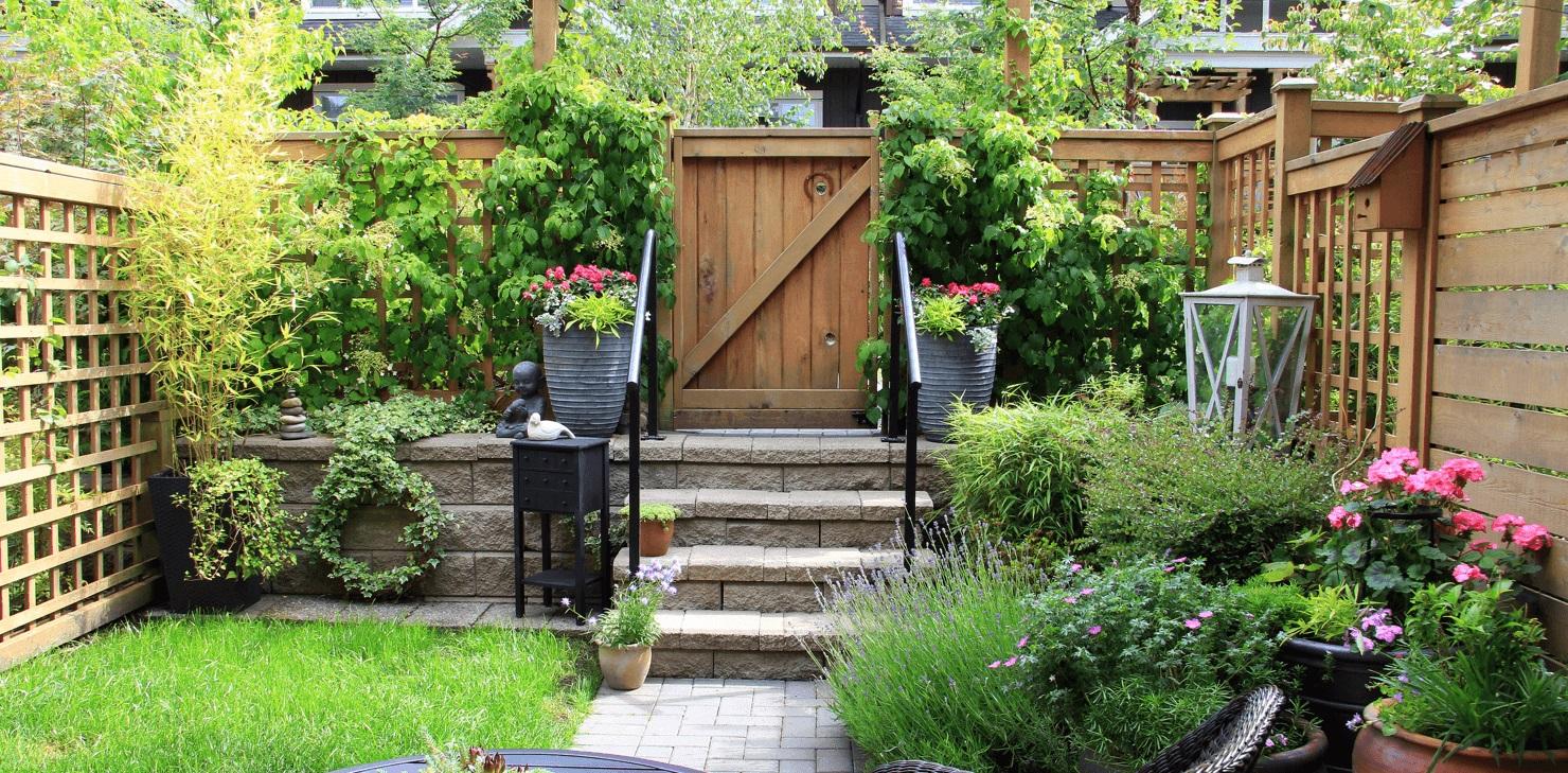 3 Ways To Beautify Your Backyard
